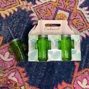 NEW Home Essentials • Cabana Cactus Sippers